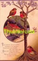 CPA EN RELIEF GAUFREE OISEAU OISEAUX EMBOSSED CARD BIRD BIRDS - Oiseaux