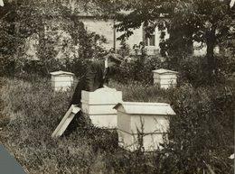 IMKER WOMEN AGRICULTURAL CLUB MISSING CORNER  21 * 16 CM Fonds Victor FORBIN 1864-1947 - Foto's