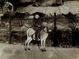 KID ON DONKEY  ENFANT SUR L'ÂNE   KINDER AUF ESEL 21 * 16 CM Fonds Victor FORBIN 1864-1947 - Fotos