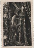 Photo Vers 1950 Jeune Femme Seins Nus Indochine Asie 5 - Ethnics