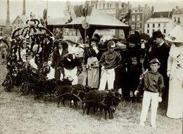 DIEPPE FRANCE BATTLE OF FLOWERS AT DIEPPE MAIL CART BLACK LAMBS  21 * 16 CM Fonds Victor FORBIN 1864-1947 - Lieux