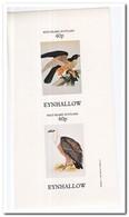 Eynhallow 1982, Postfris MNH, Birds Of Prey - Regionale Postdiensten