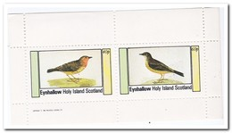 Eynhallow 1982, Postfris MNH, Birds - Regionale Postdiensten