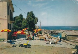 20 / CENTURI CAP CORSE L'HOTEL DU VIEUX MOULIN VUE DE LA TERRASSE / ALESSANDRI PRO/ CIRC 1966 - Sonstige Gemeinden