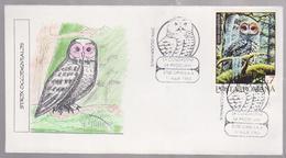 OWLS  FDC COVER  ROMANIA,. OWLS, 1995  COUNTY FETESTI - Búhos, Lechuza