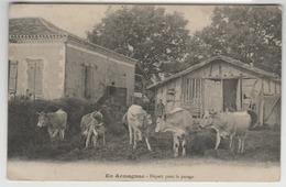 """32 - En Armagnac - Ferme """"Départ Pour Le Pacage"""" - France"""