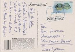 AK Bahamas Antilles West Indies Florida Stamp Timbre Briefmarke British Commonwealth Stempel Cachet Cruise Kreuzfahrt - Bahamas