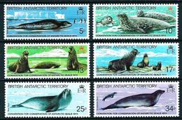 Antártida (Británica) Nº 118/23 Nuevo - Nuevos