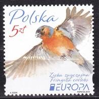 Poland, Fauna, Birds, EUROPA ** / 2019 - Autres