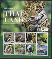 Micronesia, Animals, Birds ** / 2013 - Stamps