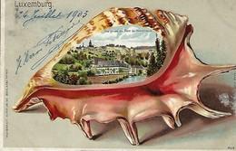 Luxembourg  -  24.7. 1903  Vue Prise Du Pont Hundhaus  Verlag  Papeterie Kalbfleisch,Luxembourg  2 Scans - Cartes Postales