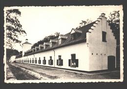 Retie - ACW Vacantiehuis De Linde - Achterzicht - Retie