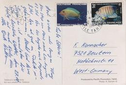 AK Tetiaroa Island Birds Ilot Aux Oiseaux Tahiti Polynesie Francaise French Polynesia Briefmarke Stamp Timbre Colonie - French Polynesia