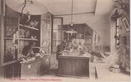 CPA (Paris) Lycée Fénelon - Cabinet D'Histoire Naturelle (avec Légende Rouge) - Enseignement, Ecoles Et Universités