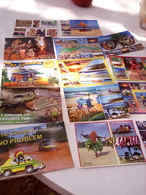 Lots Of 30 Collectable Gambia Postcard - Gambia