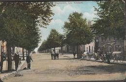 MAYNOOTH IRELAND - KILDARE COUNTY 1906 Antique Postcard - Other