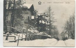 2B-CORSE  -VIZZAVONA-  La Foce - France