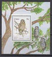 D10804 Ciskei 1991 South Africa OWLS Birds Of Prey M-s MNH - Afrique Du Sud Afrika RSA - Ciskei