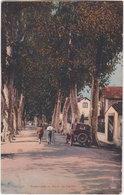 66. PRADES. Promenade Et Route De Catllar. 23 - Prades