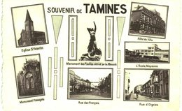 TAMINES Souvenir De Tamines - Sambreville
