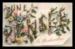 88 - RAMBERVILLERS - UNE PENSEE - CARTE FANTAISIE - Rambervillers