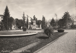 Cartolina  - Postcard /  Viaggiata -  Sent -  Conegliano, Monumento Ai Caduti. ( Gran Formato ) - Treviso