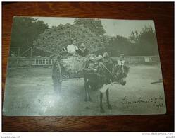 LAMALOU LES BAINS : Carte Photo Fete Des Fleurs 1912 .............. CV-5495 - Lamalou Les Bains
