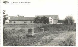 TAVIERS  La Ferme Wauthier. - Eghezée