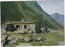 Bramans - Le Refuge D'Ambin - (En Haute Maurienne, Savoie) - CHIEN - Saint Jean De Maurienne