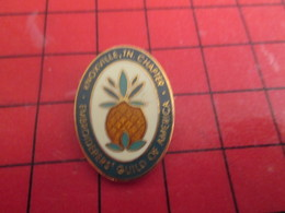 1116a Pins Pin's / Rare & De Belle Qualité  THEME : ASSOCIATION / EMBROIDERERS GUILD OF AMERICA KNOXVILLE CHAPTER ANANAS - Associations