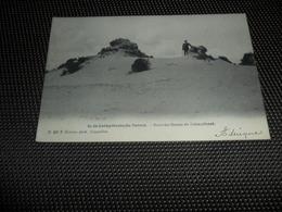 Calmpthout ( Kalmthout )  Duinen   Dunes  F. Hoelen N° 347 - Kalmthout