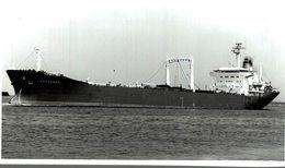 Amazonas  +-14  * 9 CM BARCO BOAT Voilier - Schiffe