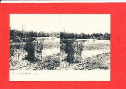 LE JOURDAIN Cpa Stéréoscopique   21 LL - Postcards