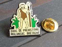 PARC DE PREHISTOIRE MALANSAC BRETAGNE - Villes