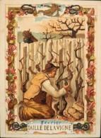 BELLE CHROMO & IMAGE - EAU DES CARMES BOYER IMP. HEROLD & Cie - Février Taille De La Vigne - BE - Vieux Papiers