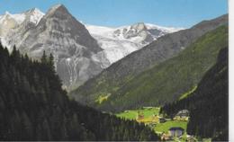 AK 0238  Trafoi Verso Madaccio E Ortler - Verlag Amonn Um 1910-20 - Bolzano