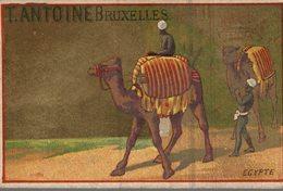 CHROMO CHOCOLAT T. ANTOINE BRUXELLES  EGYPTE - Chocolat