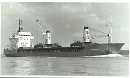Gardsun +-14  * 9 CM BARCO BOAT Voilier - Schiffe