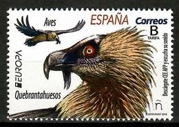 Spain 2019 España / Birds Europa CEPT MNH Aves  Vögel Oiseaux / Cu12338  34-2 - Pájaros