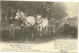 (BRETAGNE)( METIERS )( AGRICULTURE )( THEODORE BOTREL )( BARDE BRETON ) (LABOUR )( ATTELAGE DE CHEVAUX ) - Bauern