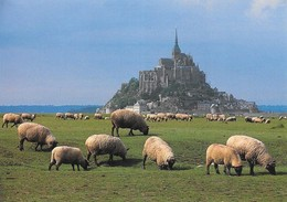 50 Le Mont Saint Michel Avec Troupeau (2 Scans) - Le Mont Saint Michel