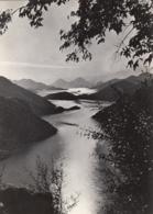 Skadar Lake 1964 - Albania
