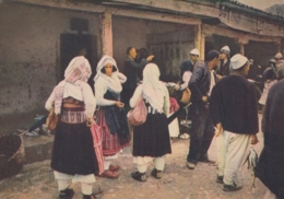 Shkodra - Pazari I Peshkut , Fish Market - Albania