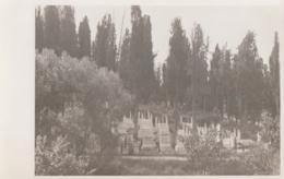Shkodra Scutari - Cemetery - Albania