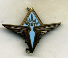 Insigne Bureau Central Des Archives De L Armée De L Air(B.C.I.A.A.A) - Forze Aeree