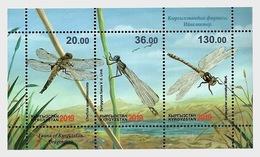 Kirgizië / Kyrgyzstan - Postfris / MNH - Sheet Fauna Van Kirgizië 2019 - Kirgizië