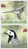Letland / Latvia - Postfris / MNH - Complete Set Europa, Vogels 2019 - Letland