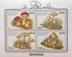 Ghana 1990 Mushrooms Min. Sheet Of Four - Ghana (1957-...)