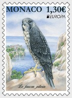 Monaco - Postfris / MNH - Europa, Vogels 2019 - Monaco