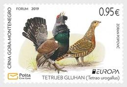 Montenegro - Postfris / MNH - Europa, Vogels 2019 - Montenegro